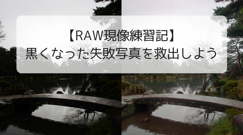 RAW現像失敗写真救出