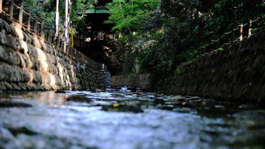 等々力渓谷は東京23区内で唯一の渓谷。最高にフォトジェニックだった。