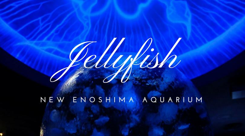 新江の島水族館のクラゲが最高だからおすすめしたい。クラゲプラネット(海月の惑星)がフォトジェニックすぎた!!!