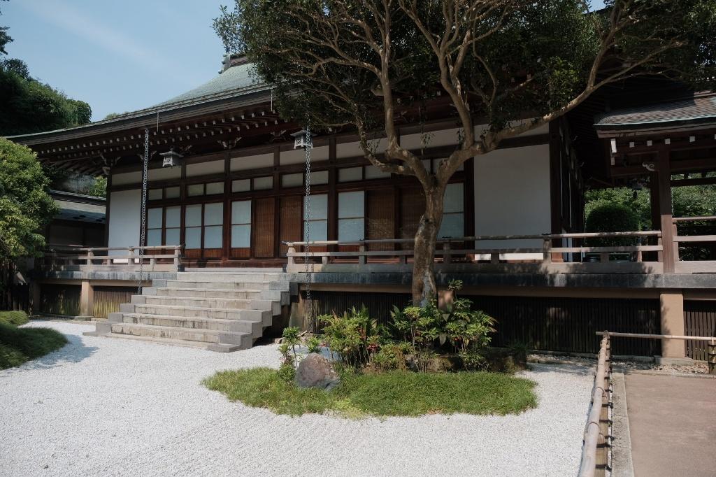竹の庭ないから見た本堂