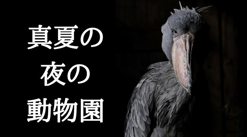 2019年日程追記【真夏の夜の上野動物園】で闇夜に潜む動物を撮影してきた。