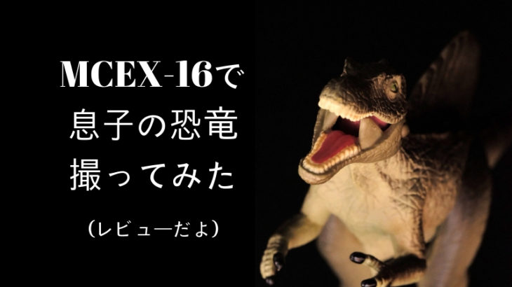 【レビュー】MCEX-16を買ったら、マクロレンズXF60mmf2.4macroの代用になるのか?