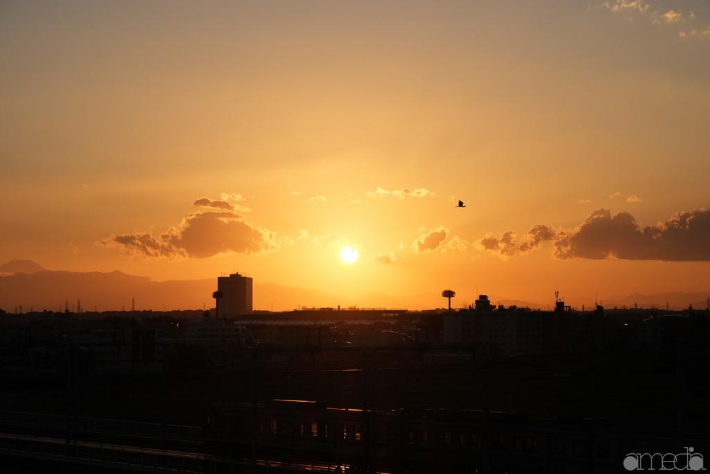 多摩川浅間神社からの夕焼け撮影