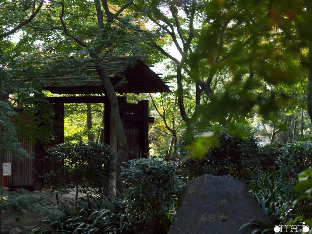 旧朝倉家住宅 回遊庭園
