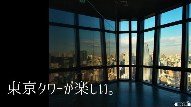 東京タワーを色々な角度から撮影をしてきた。メインデッキ(大展望台)が最高だったよ!!
