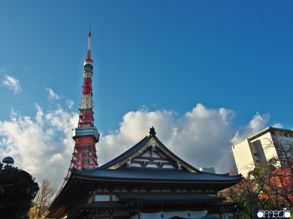 東京タワー 撮影スポット