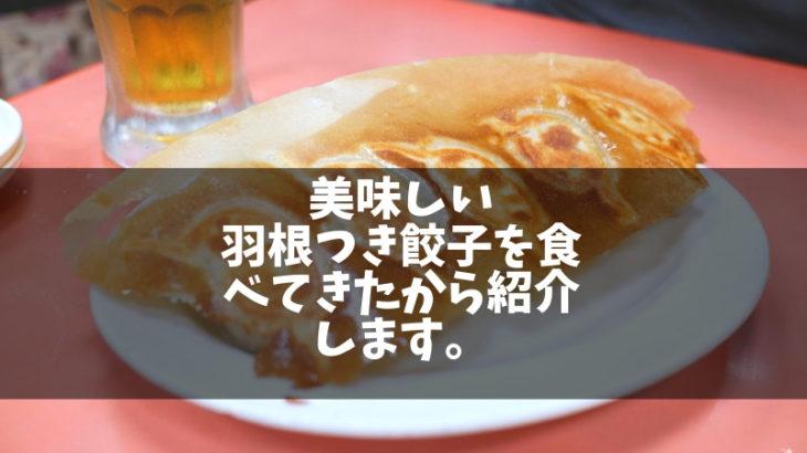 【蒲田】餃子有名店「歓迎(ホワンヨン)本店」美味しいので肉汁レポします。|羽根付き餃子発祥の地に食べに行こう!!