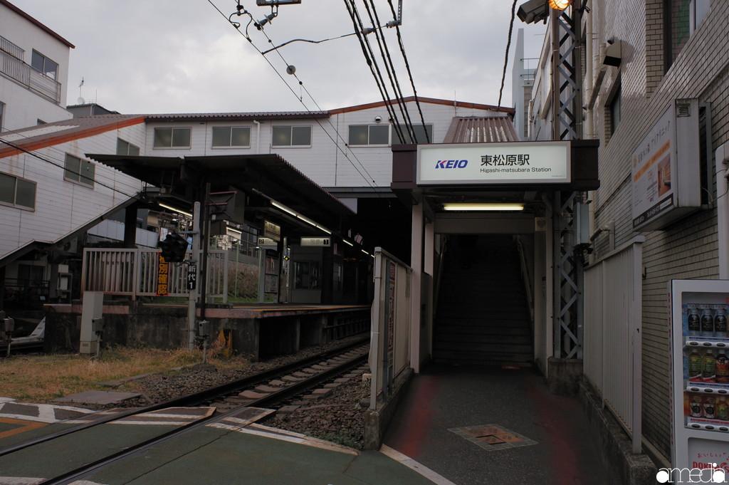 東松原 羽根木公園