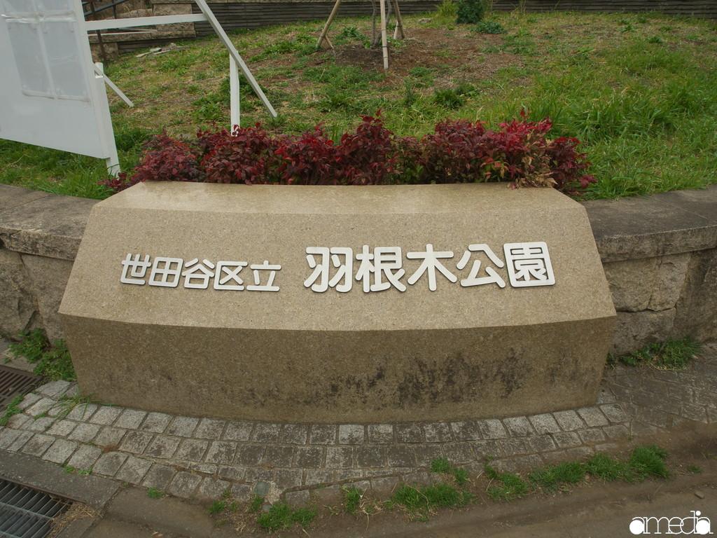 世田谷区 羽根木公園