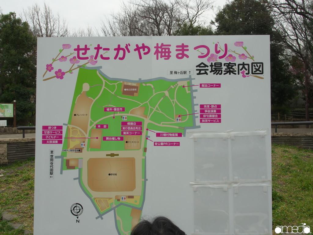 2019 世田谷区 梅まつり