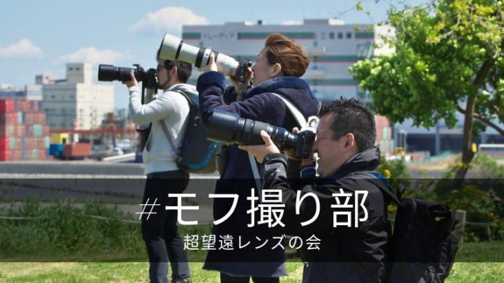 城南海浜公園 望遠撮影会