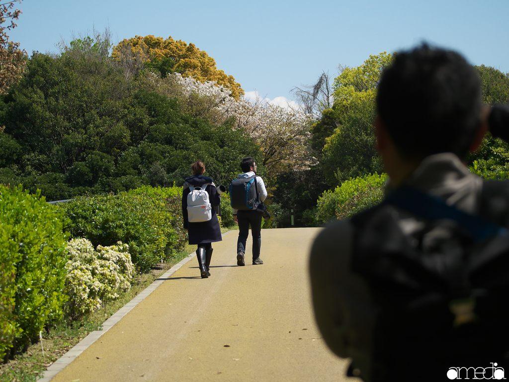 東京港野鳥公園 望遠撮影会