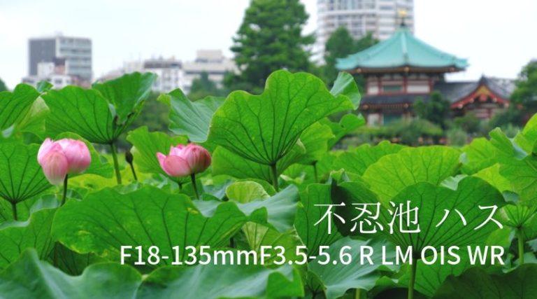 F18-135mmF3.5-5.6 R LM OIS WR 不忍池 ハス撮影