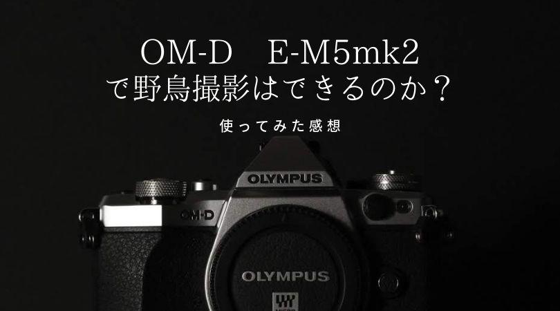 【作例もあり】オリンパスOM-D E-M5mark2での野鳥撮影はどのくらい出来るのか?